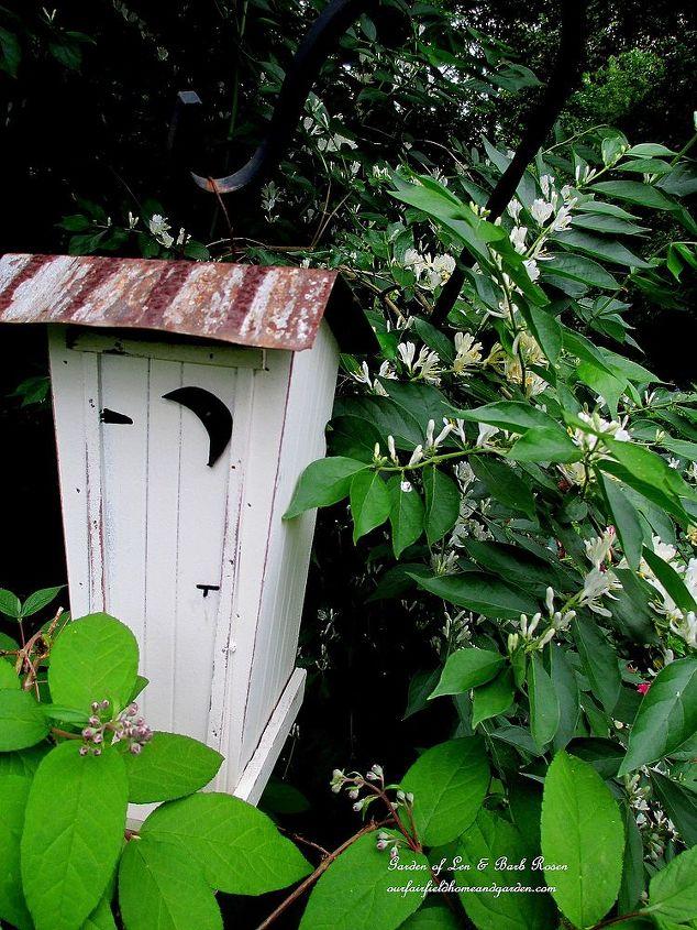 Outhouse Birdhouse by the honeysuckle bush