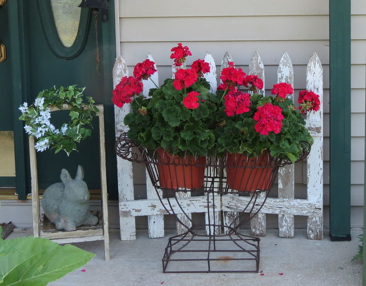 I love Geraniums and picket fences.  Thought the rabbit would be happy being next to them.
