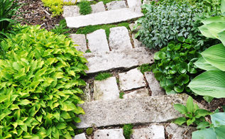got cracks fill em, gardening, landscape, Looking down the stone stair and loving the Irish Moss and sedum in the cracks These had been planted a year or so ago and were spreading nicely
