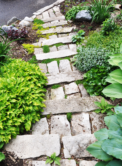 Looking down the stone stair and loving the Irish Moss and sedum in the cracks.  These had been planted a year or so ago and were spreading nicely.