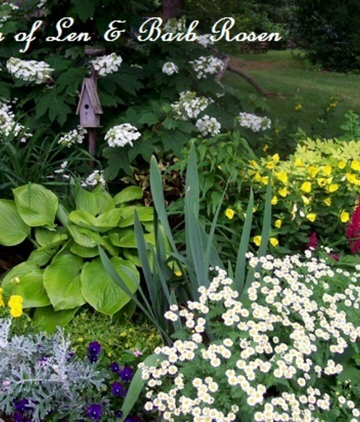 Part Shade winners ~ oakleak hydrangea, hosta, feverfew, sundrops, iris, artemisia, astilbe, pansies and spiderwort
