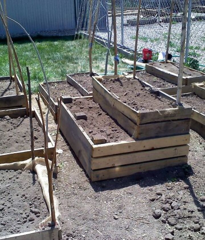 Newly Constructed Garden Boxes