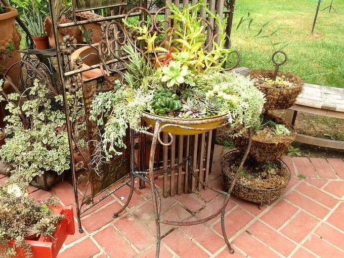 gardening, gardening, succulents, Newly planted iron chair