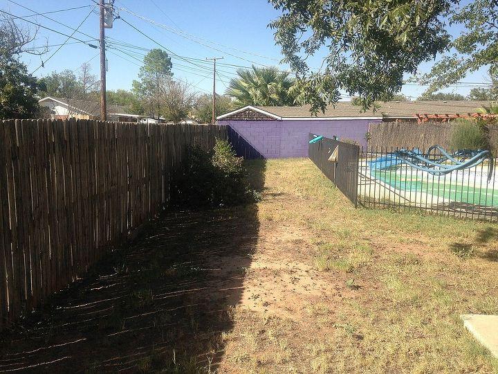 yard design help, landscape