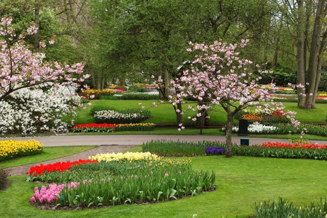 gardening tips and tricks for the busy gardener, gardening, Spring Garden