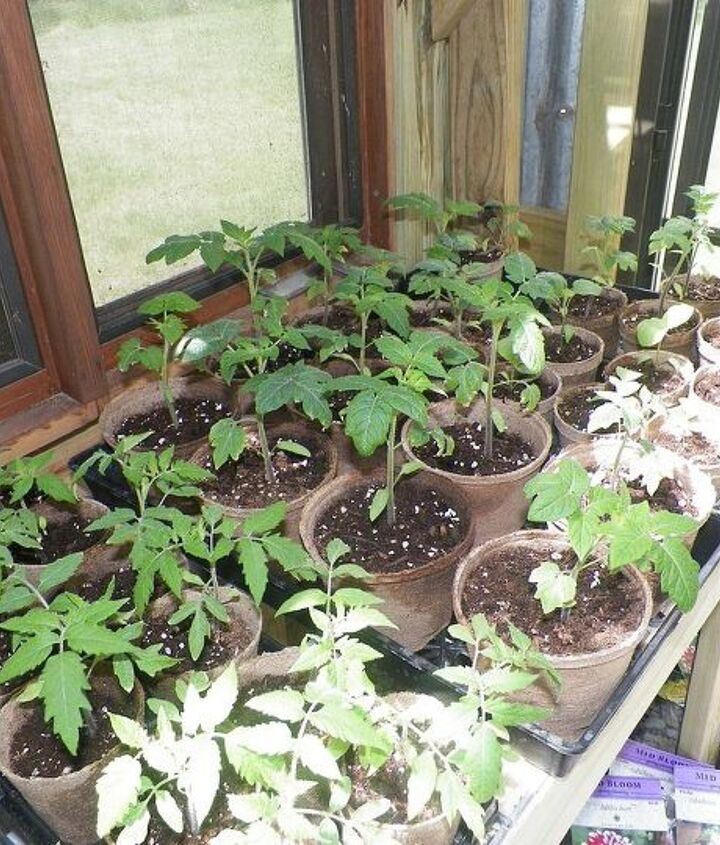 our greenhouse, doors, garages, gardening