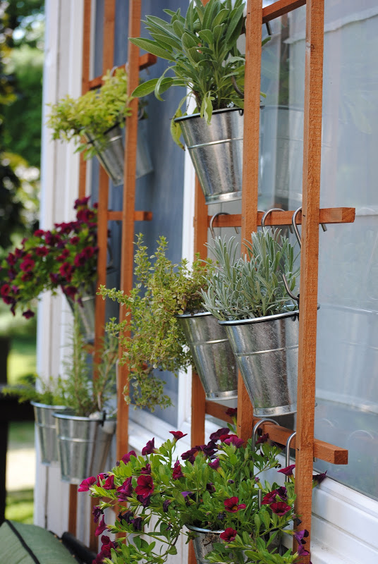 Herbs and flowers hang from a trellis.  With daily watering they did great in the well draining pots, plus they provided a beautiful scent and tasty ingredients for our summer cooking!