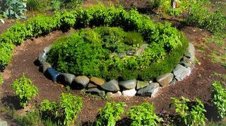 our herb spiral, gardening, landscape, This cam off Facebook one of our inspirations said it was at Solar Living Institute in Hopland CA We didn t have the room but like the ability to walk into the spiral itself