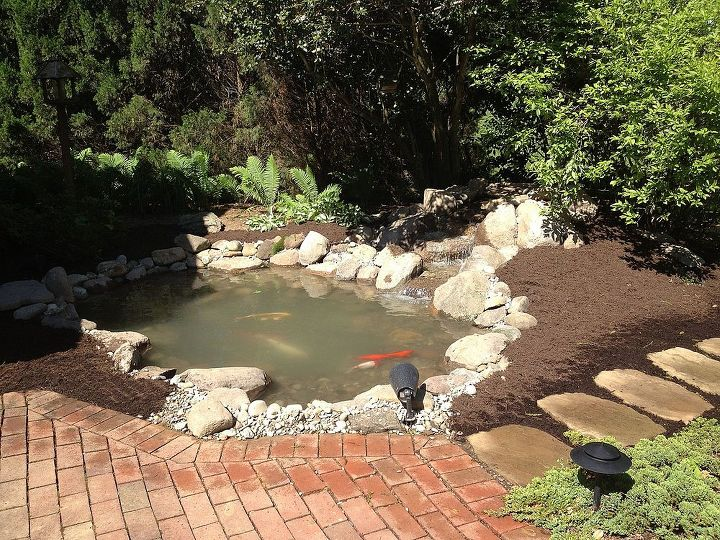 pond renovation, outdoor living, ponds water features