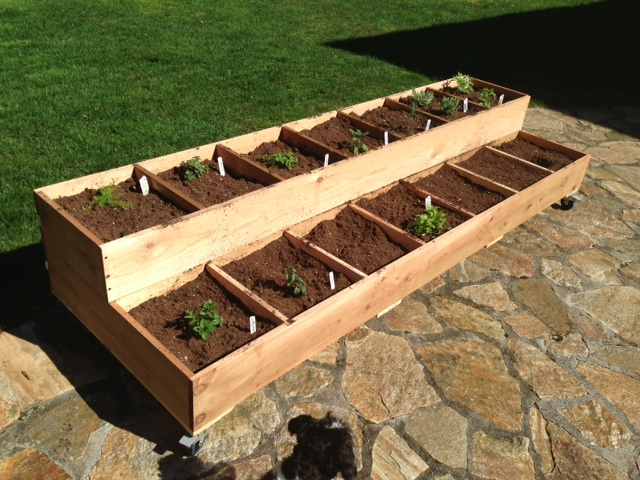 Pacific NW organic herb bed on wheels