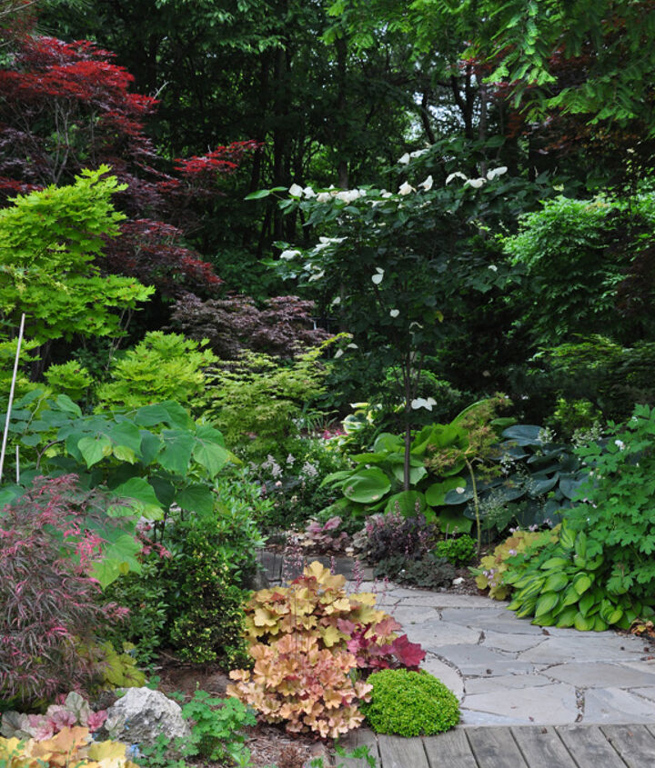 Throughout the garden, and especially along its outer perimeter, mature trees cast pockets of  'Garden Canadensis' into shade and part shade.