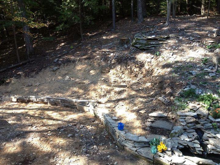 planting for slope, gardening, landscape
