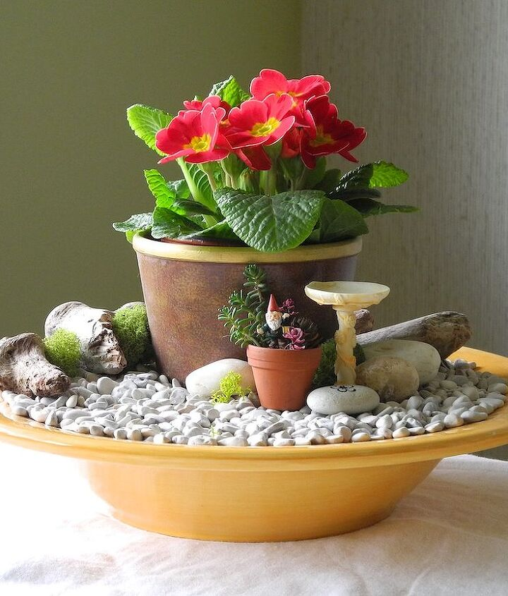 Fast Easy Indoor Miniature Garden Ideas For The Black Thumb Hometalk