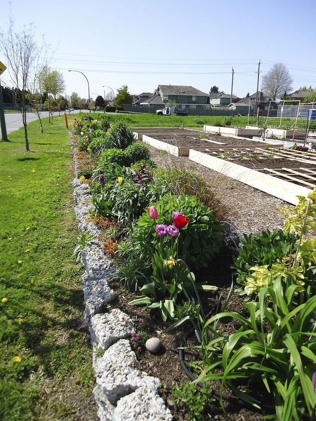 The rock garden is built in 2 sections each being 65' long with an arbor in the center as a grand entrance to our community garden.