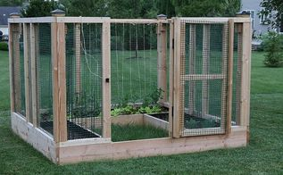 diy raised bed garden enclosure, diy, gardening, raised garden beds, Here s the enclosure with our spring crop of lettuce and peas We tied twine to the structure to create a lattice for the peas