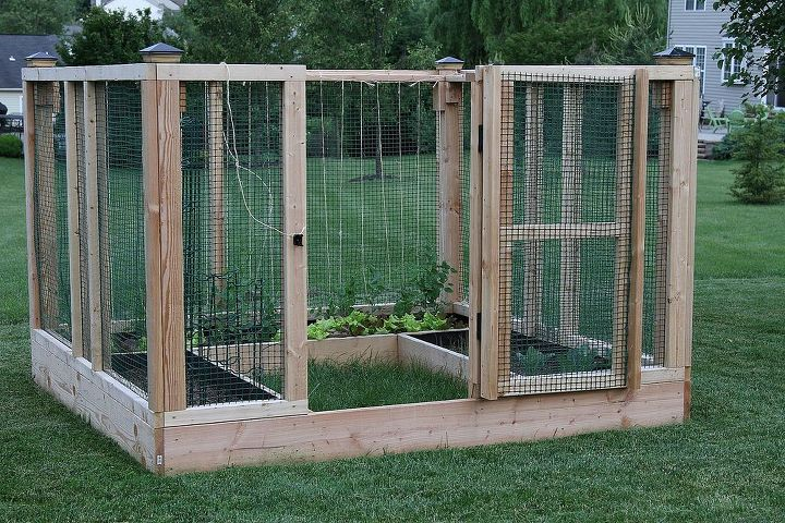 Here's the enclosure with our spring crop of lettuce and peas. We tied twine to the structure to create a lattice for the peas.