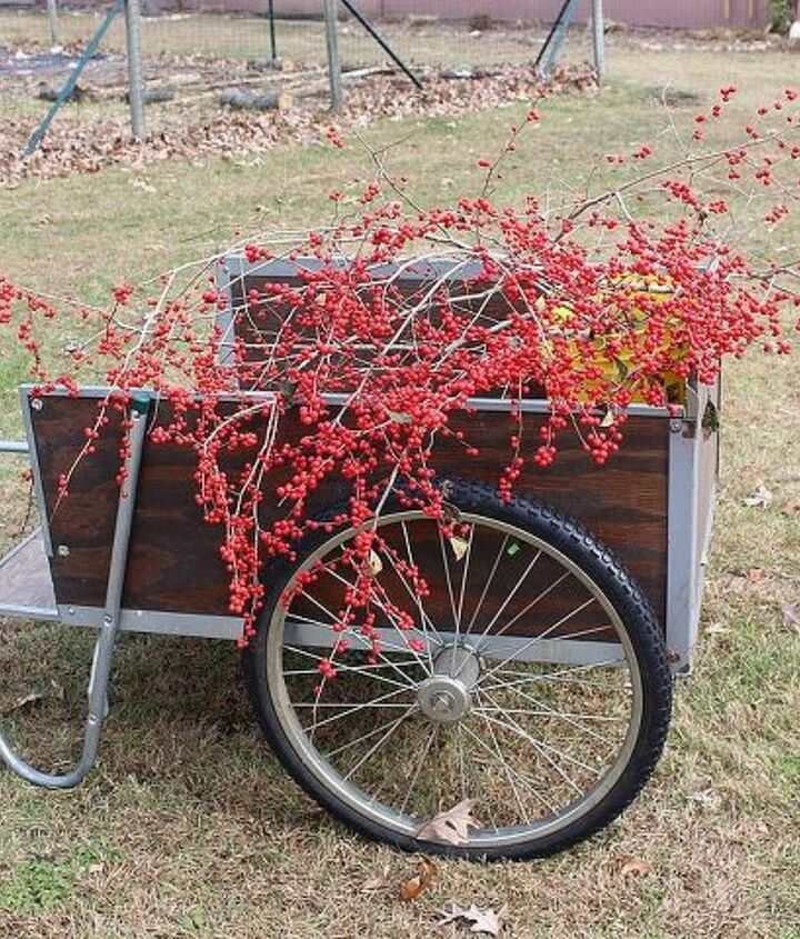 Nothing like a splash of red to cheer me up! Winterberry Holly berries in the garden cart.