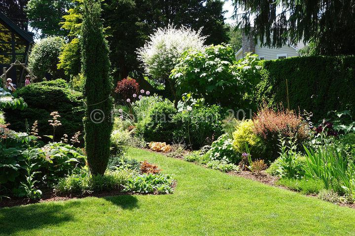 fred bland s anything but bland garden, flowers, gardening, perennials, succulents