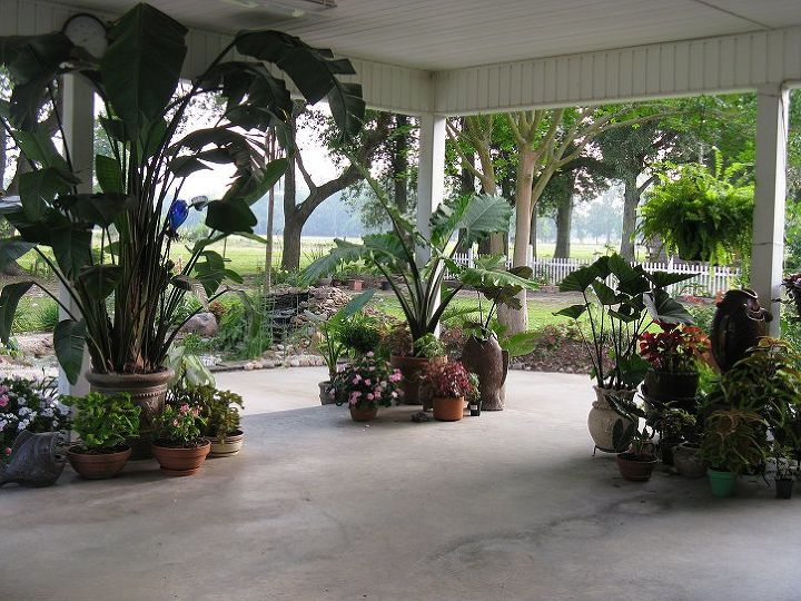 This is the right side of the patio.