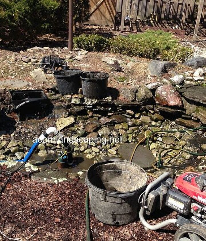 Pond Cleaning Service in Rochester NY