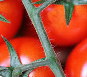 Big mature ass want some tomatoes