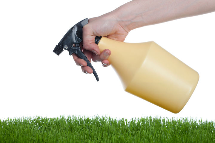 why go green with your pest control, pest control