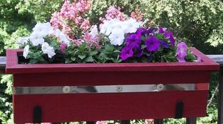 q 1952 cape cod, curb appeal, diy, painting, If you go with window boxes I would be happy to comp you a couple of them
