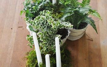 How to Make a Moss Centerpiece for Your Next Garden Party