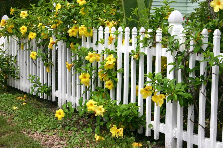 adding a fence to my garden, fences, gardening