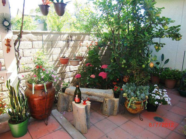 my small garden, gardening, outdoor living, ponds water features