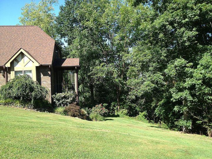 q tudor revival or, curb appeal, gardening, landscape, House eveislestudios com