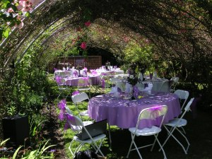 just remembering a wonderful wedding in our garden, outdoor living, Under the rose arbor lunch was served