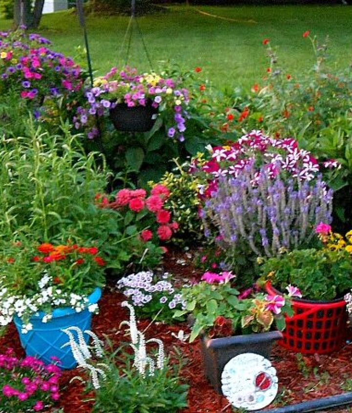 Mid-June in zone 5/6, Upstate NY. I say zone 5/6, because while we're actually in zone 5,living 5 miles from Lake Ontario keeps zone 6 plants coming back in the spring.  Had fun adding some color this year by spray painting old pots.