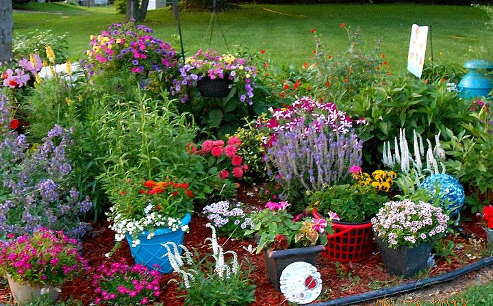 summer time flowers, flowers, gardening, Mid June in zone 5 6 Upstate NY I say zone 5 6 because while we re actually in zone 5 living 5 miles from Lake Ontario keeps zone 6 plants coming back in the spring Had fun adding some color this year by spray painting old pots