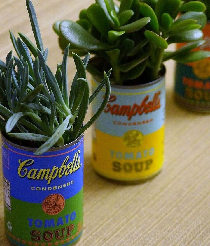 soup can planters, gardening, repurposing upcycling, succulents, I love the bright pop of color