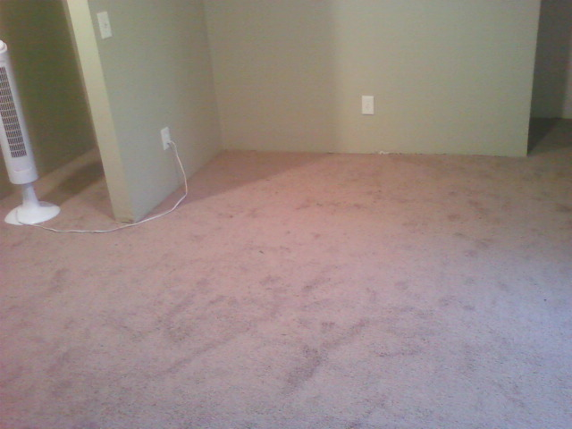 The carpet looks pink, but it's actually light brown