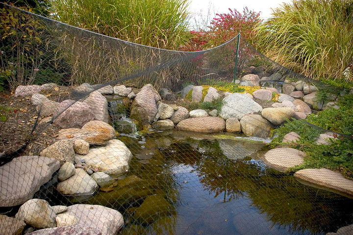 Tip #8 Cover your Pond with Pond Netting during the big leaf drop period. It can be removed after most of the leaves have fallen. You can elect to keep your pond running all winter. Watch for ice damning and add water as needed.