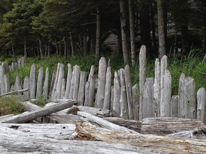 Driftwood fence in North Chesterman Beach, Tofino