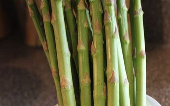 how to grow asparagus, gardening, There is nothing like fresh picked asparagus from the garden