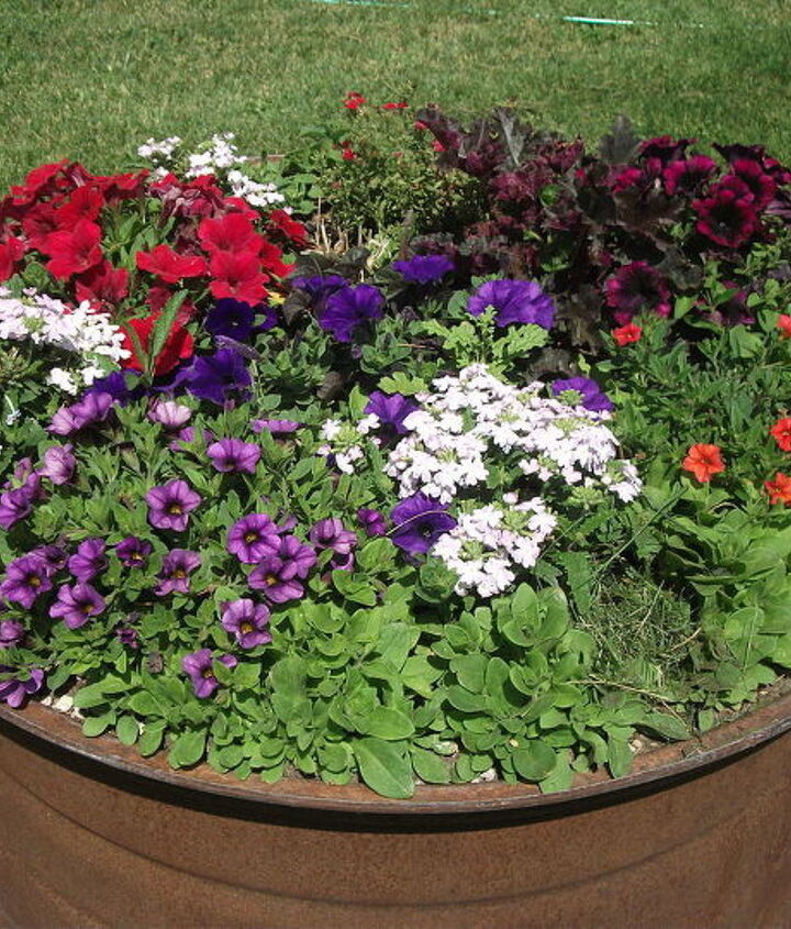 yard garden, gardening, repurposing upcycling