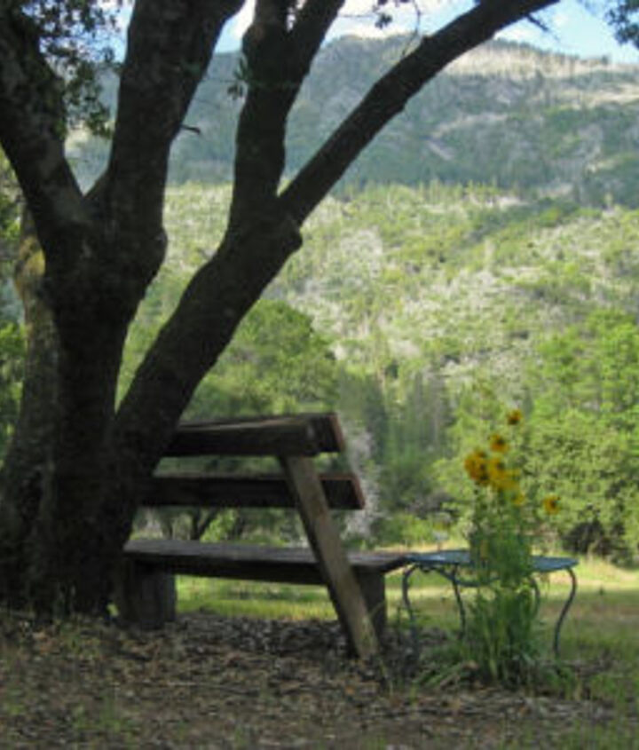 DIY Wooden bench with fabulous view - http://www.fleamarketgardening.org/2012/08/24/how-to-build-simple-garden-benches-for-free/