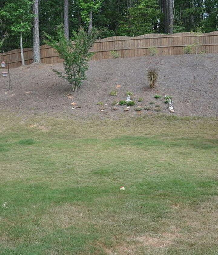center of yard