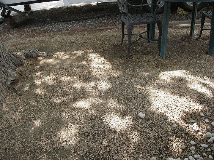 Third pic of our courtyard disaster
