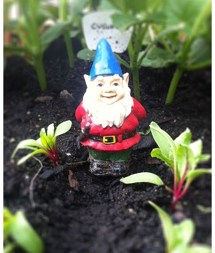 Gnomey needs a lady friend