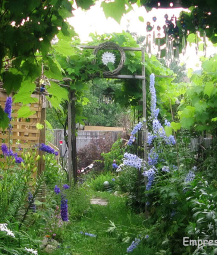 It took years for my garden to grow like this, mainly because I stubbornly refused to follow some basic, good advice.