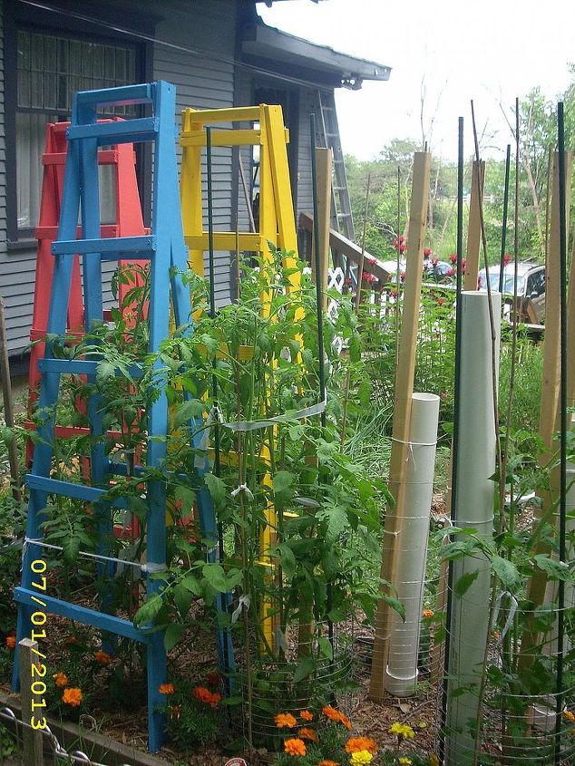 tomato cages vs tomato ladders and conserving rain water, diy, gardening, how to, painting, repurposing upcycling, Ladders and tubes in the garden and looking good