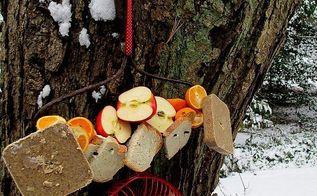 repurposed bird feeding station, gardening, repurposing upcycling, Repurposed Rake Head becomes a bird feeder