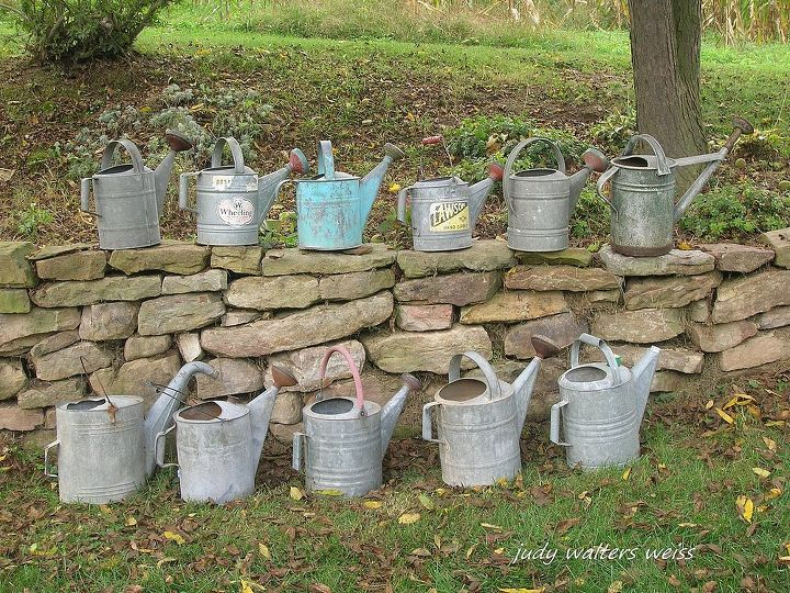 Some of my collection of watering cans