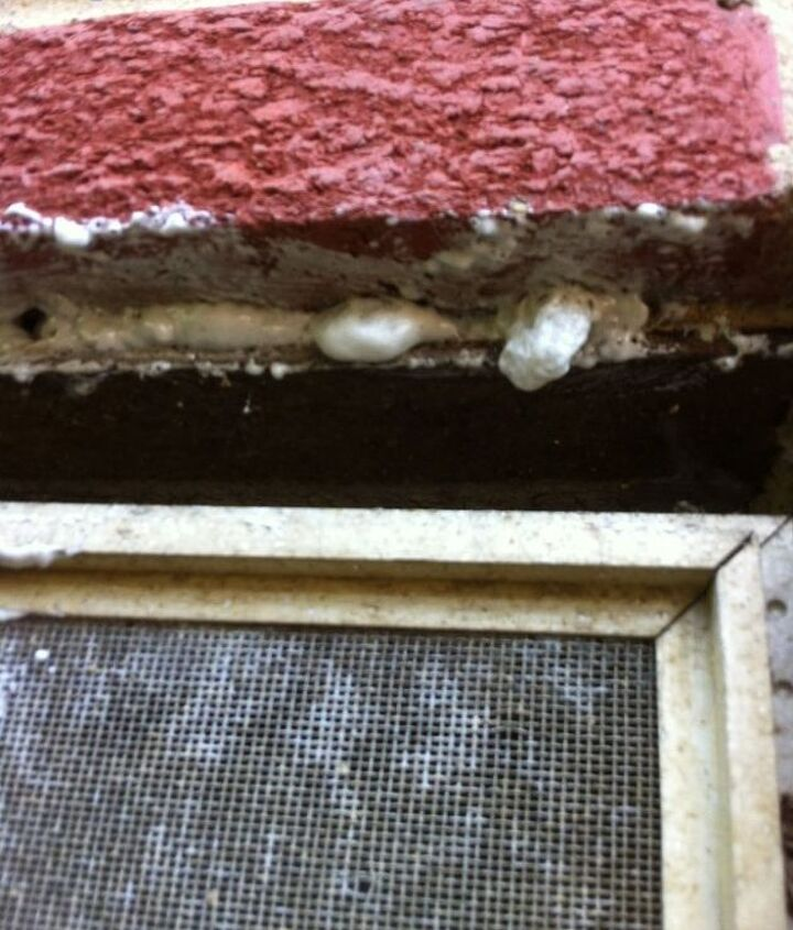 Brick hole filled with spray foam pest block