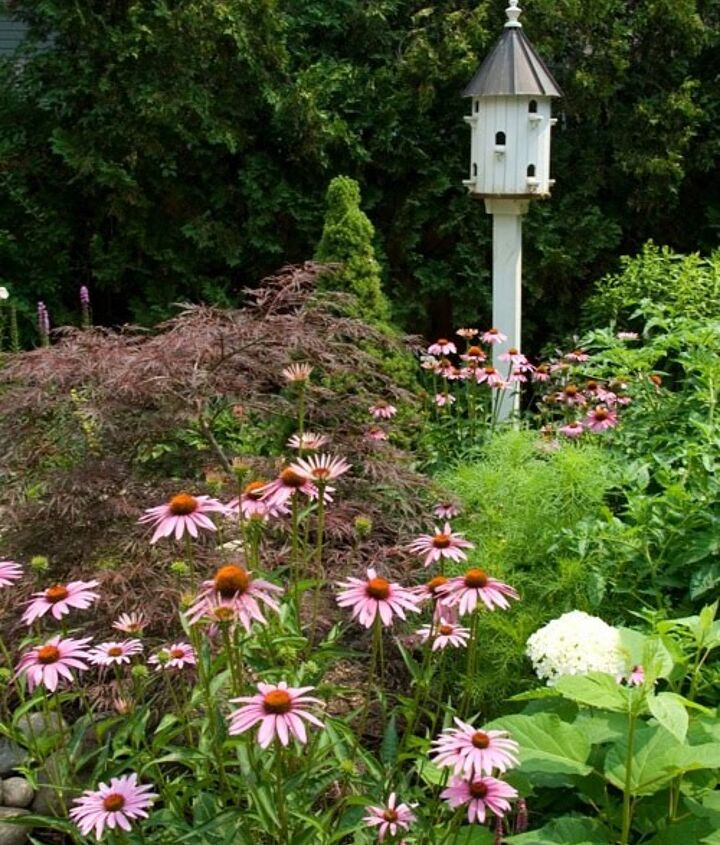 Placing birdhouses off the ground is key to keep predators away from them. Do a little research as to the types of birds in your area to ensure you find a house that will work for them.